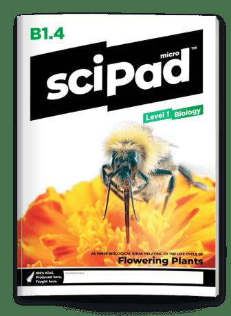 Biology 1.4 Flowering Plants