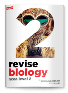 Level 2 Biology Revision Guide